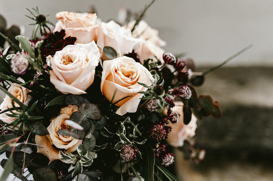 flors_plantes_bertran_bodes_10_Editorial Boho Sitges-min