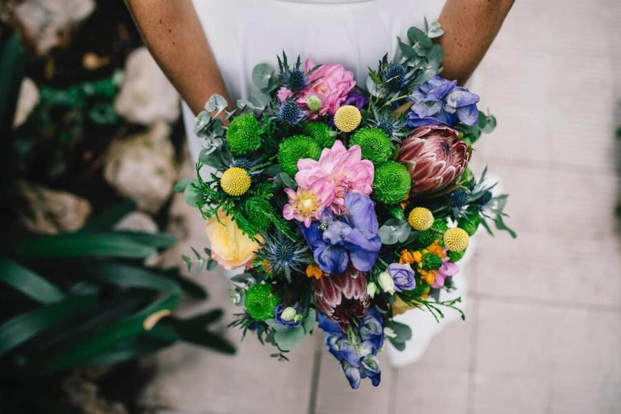 flors_plantes_bertran_bodes_2-min