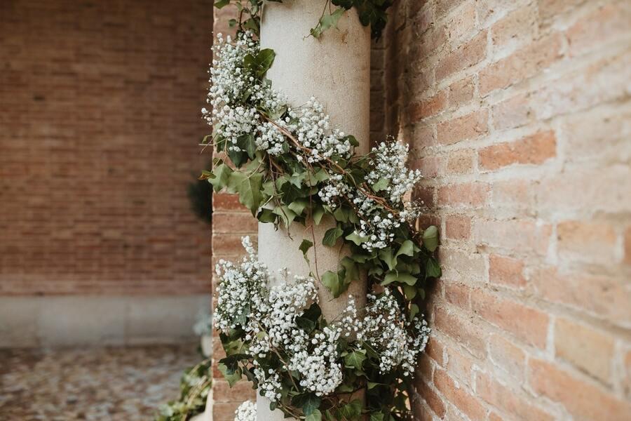 flors_plantes_bertran_bodes_24-min