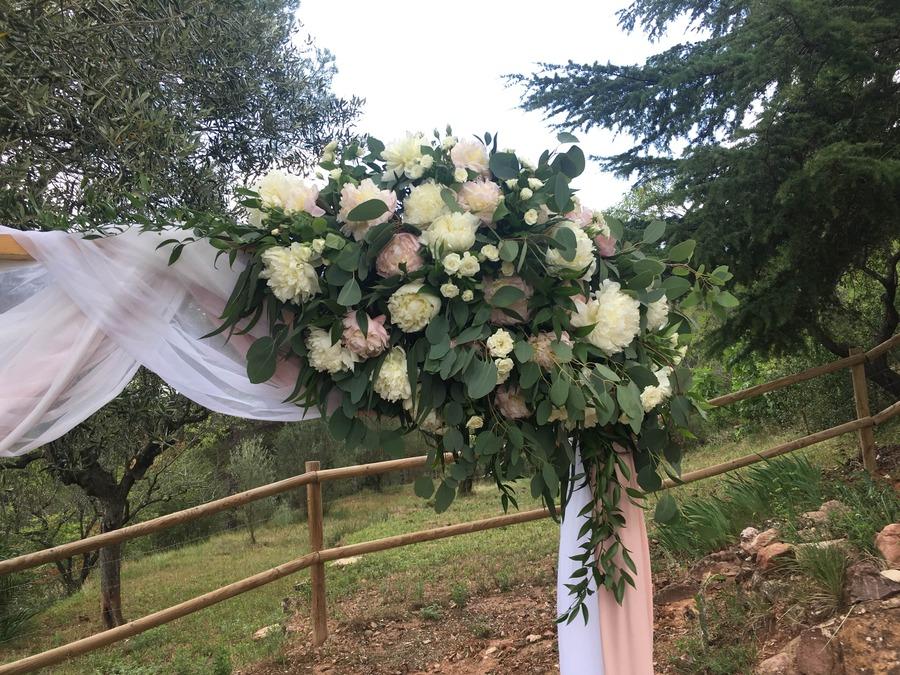 flors_plantes_bertran_bodes_9-min