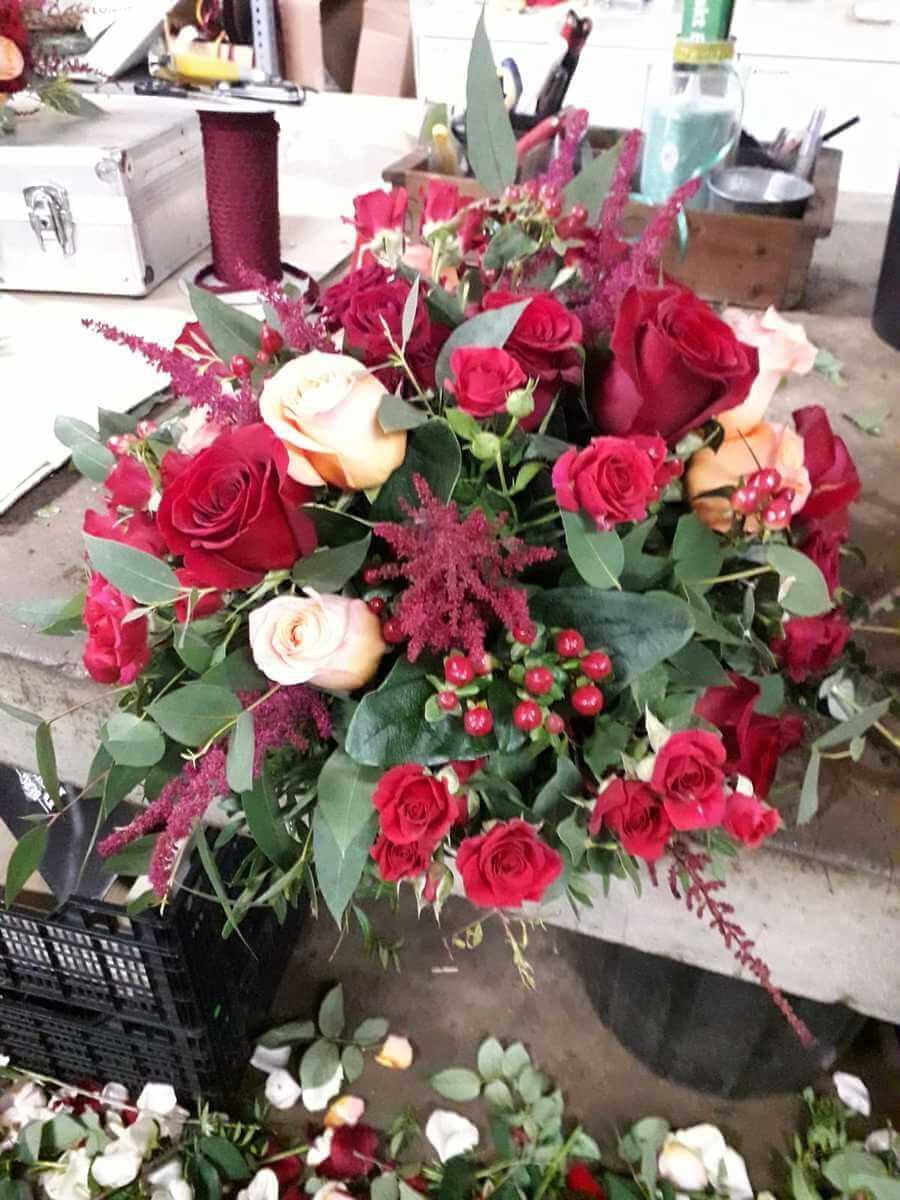 flors_plantes_bertran_particulars_10