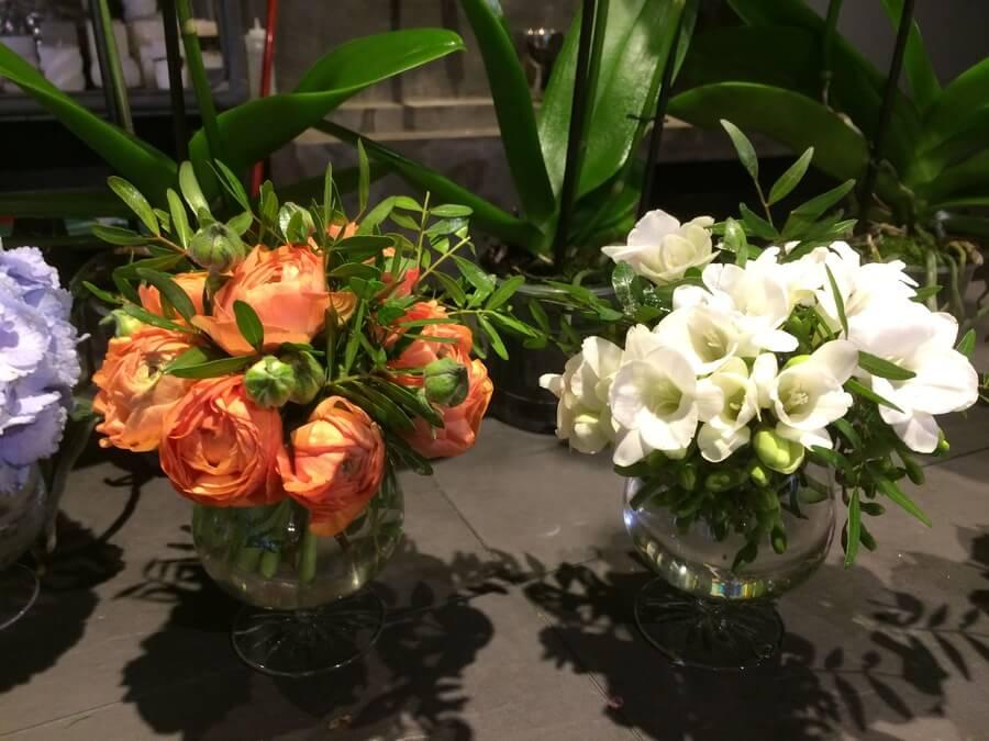 flors_plantes_bertran_particulars_15