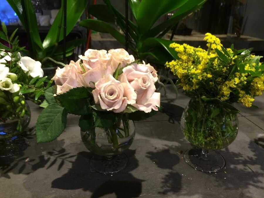 flors_plantes_bertran_particulars_16