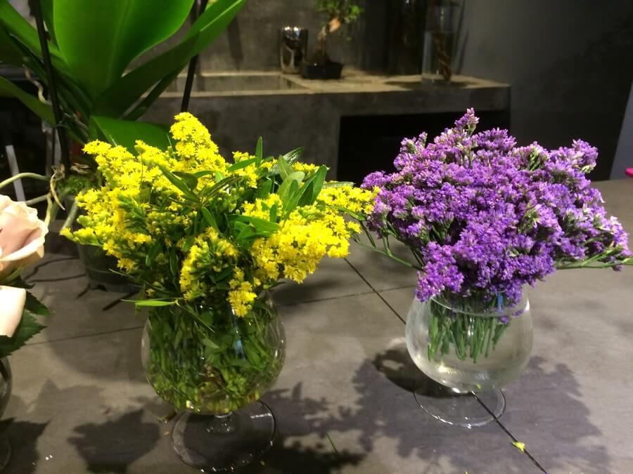 flors_plantes_bertran_particulars_17
