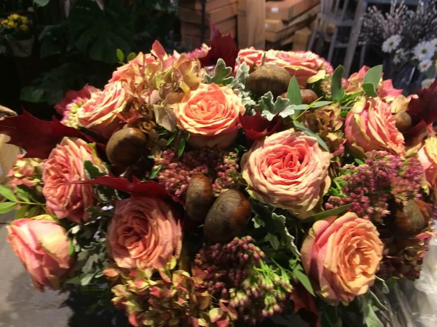 flors_plantes_bertran_particulars_18