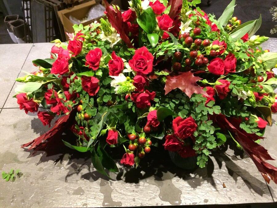 flors_plantes_bertran_particulars_19