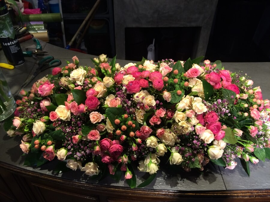flors_plantes_bertran_particulars_20