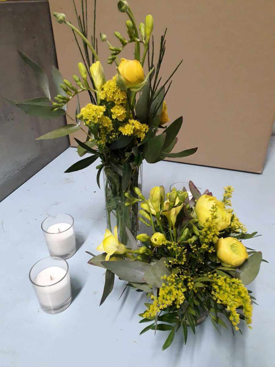 flors_plantes_bertran_particulars_5