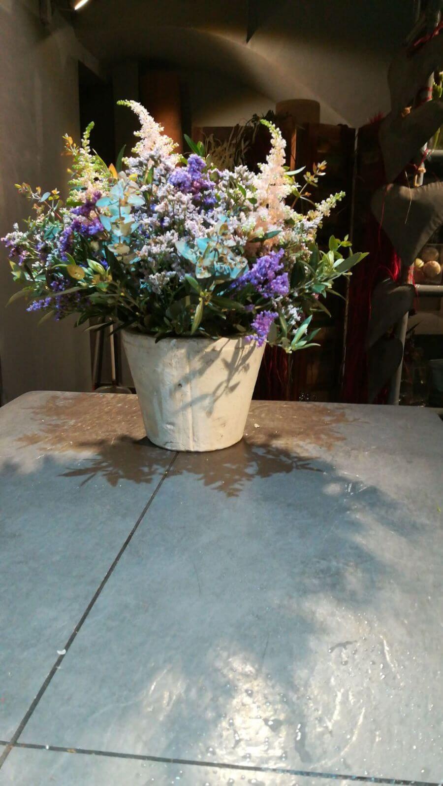 flors_plantes_bertran_particulars_7