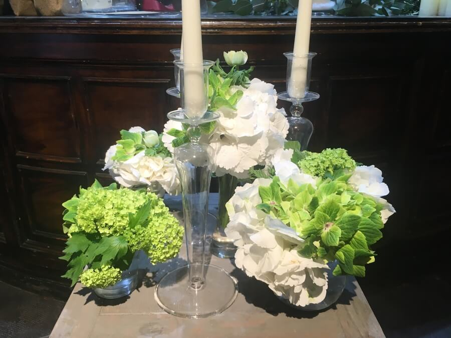flors_plantes_bertran_particulars_8