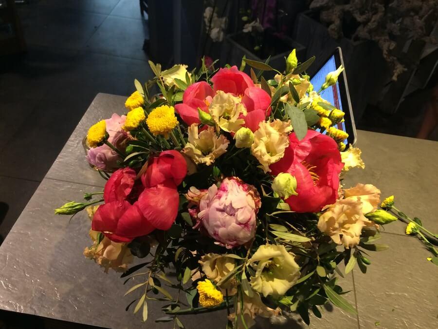 flors_plantes_bertran_particulars_9
